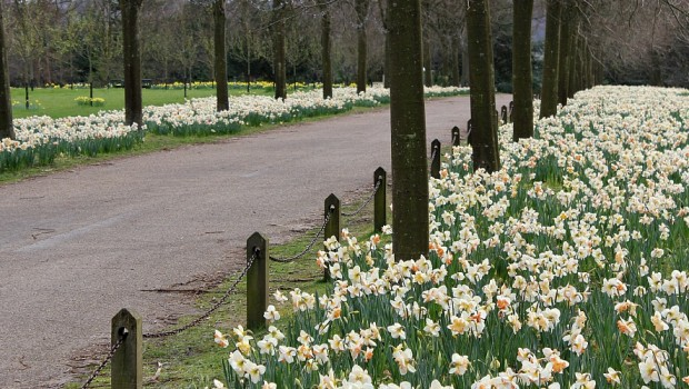 Spring at Polesden Lacey