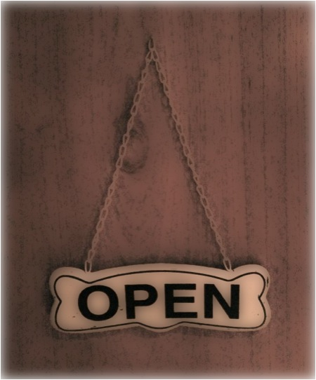 New - Open And Closed