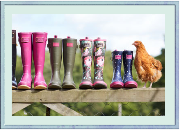 Pretty and Practical Wellies