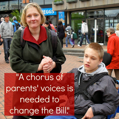 Have your say to change legal rights in SEN Bill: Join Jane Raca's campaign