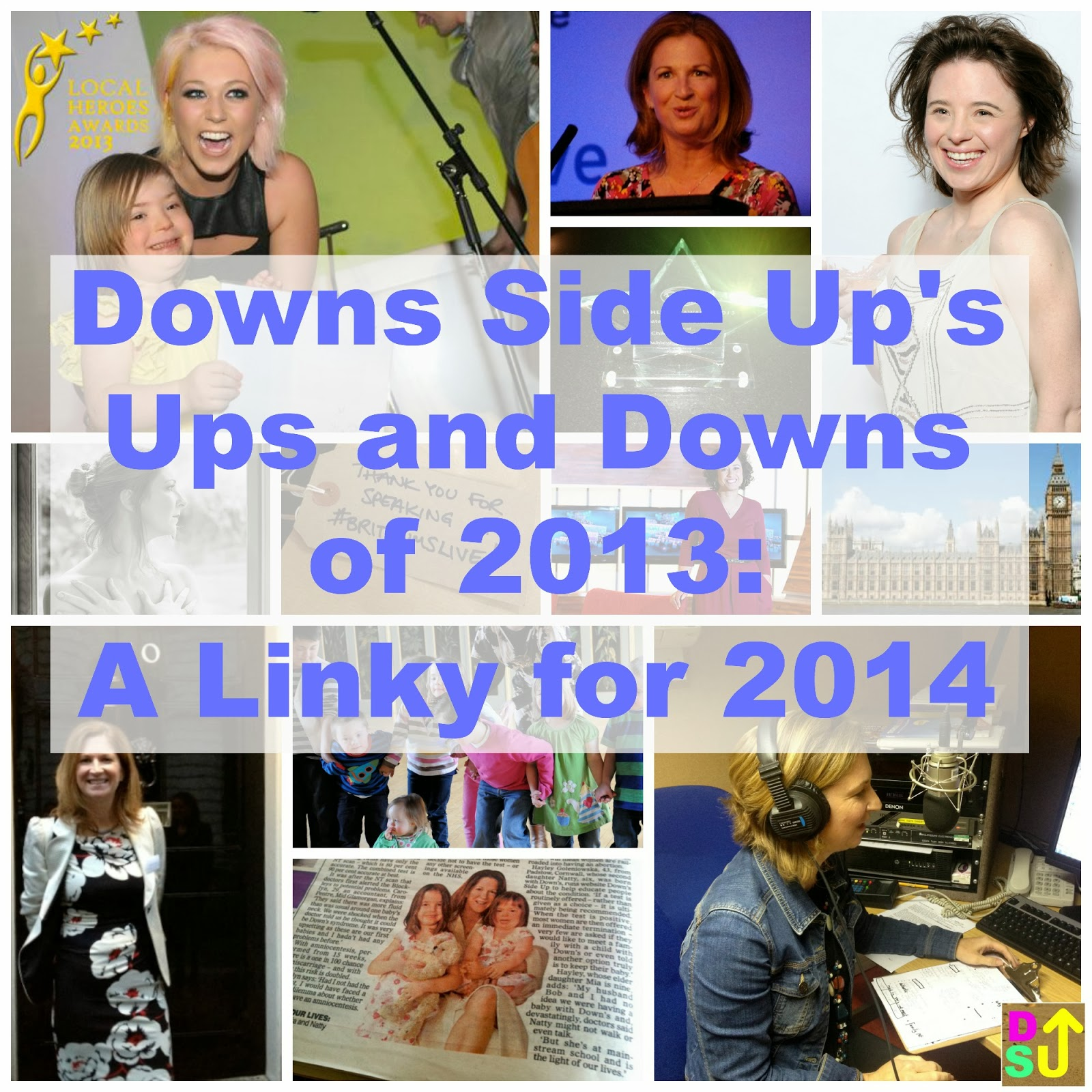 Downs Side Up's Ups and Downs in 2013: A Linky for 2014