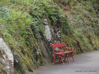 The Empty Bench - A Short Story
