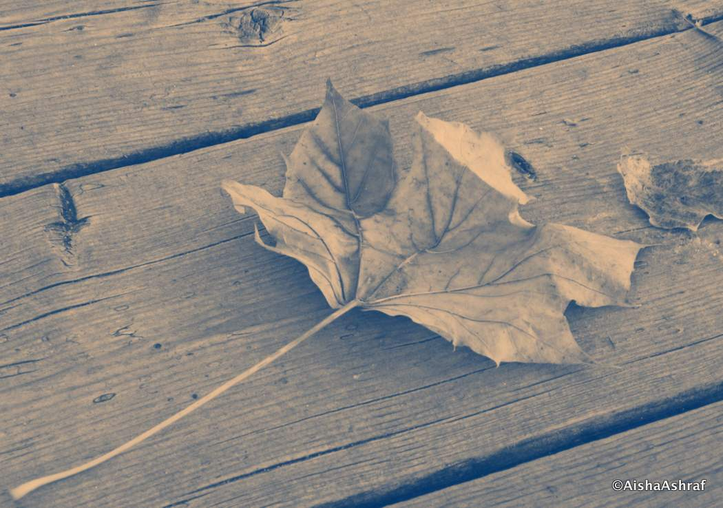 Story Of A Miscarriage (Part 1) - Expatlog