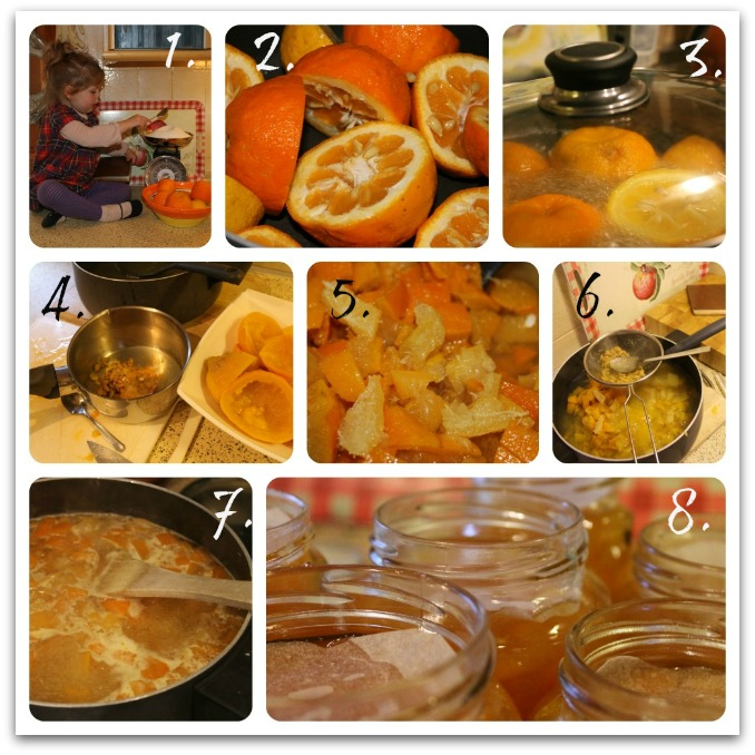 Lady Marmalade ~ how to make the best marmalade you have ever tasted