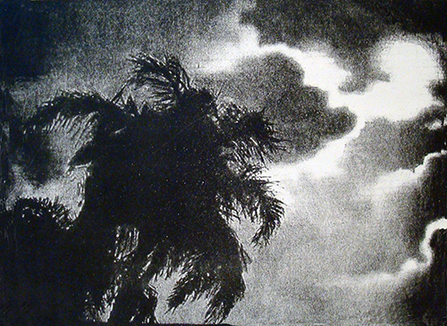 Ann Chernow  Dark Palms , 2012 one stone lithograph 11 x 14 inches