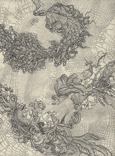 Karla Hackenmiller  Liminal Tauk , 2012 etching 12 x 9 inches