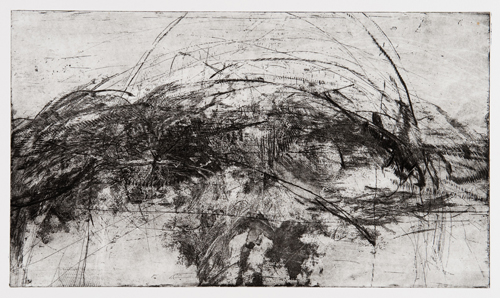 Erin Wiersma  3.12.11 - , 2011 Steel etching 9 x 16 inches