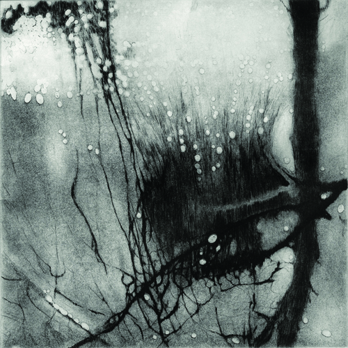 Anita S. Hunt  Submerged , 2009 Drypoint and spitbite aquatint 9 x 9 inches