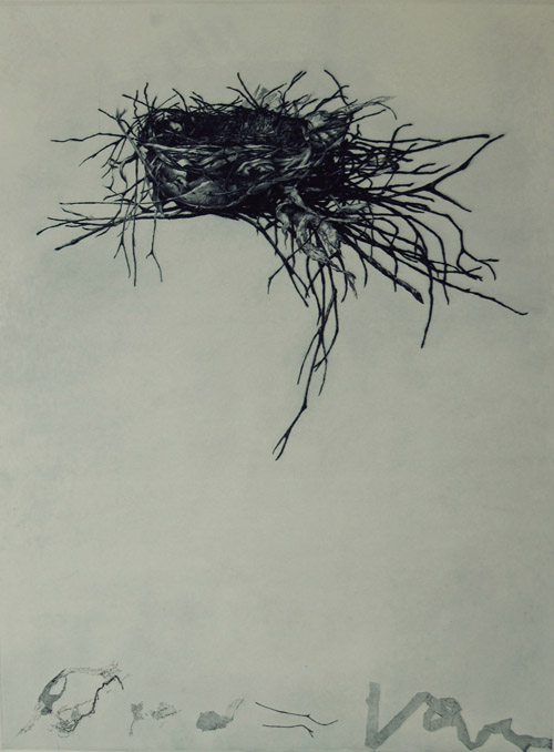 Jenny Freestone  Vessel, Recycle , 2008 Drypoint and soft ground etching 24 x 18 inches