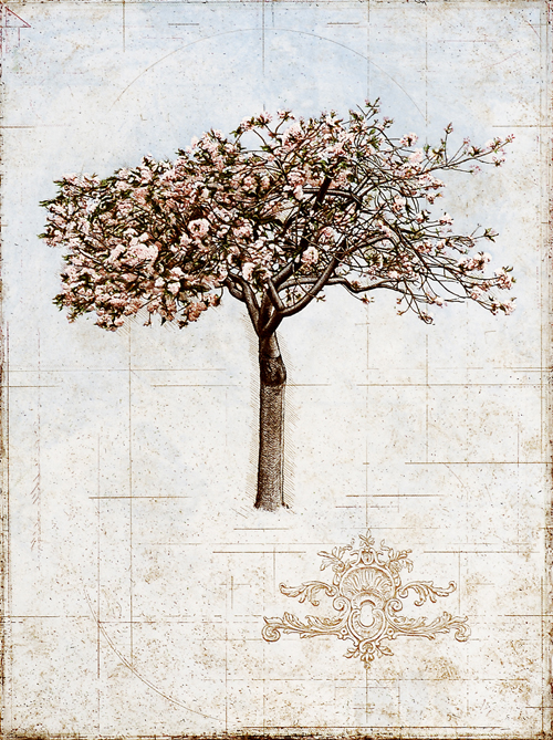David Smith-Harrison  Cherry Tree  Intaglio