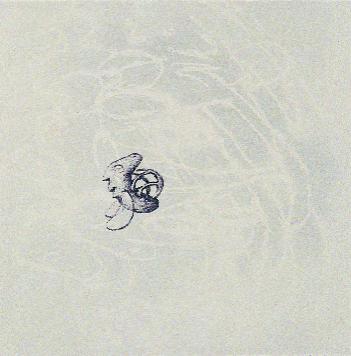 Joseph D'Uva  rockinghorsefly  intaglio, lithography