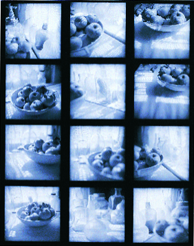Kathleen Kondilas  Window  silver gelatin contact print