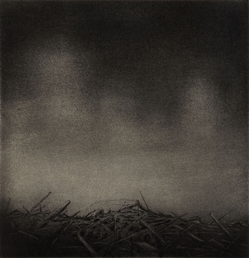 Anita Hunt   The Gloaming , 2014 drypoint, carborundum aquatint and chine collé 6 x 6 inches