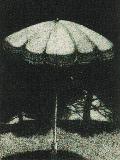 Buck Porge  Nightshade  mezzotint