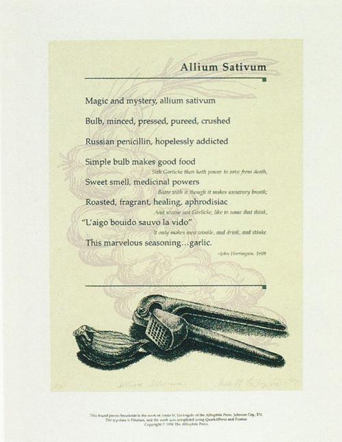 Anita DeAngelis  Allium Sativum  lithograph