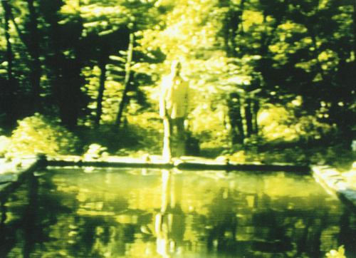 Bill Viola   The Reflecting Pool , 1977-79 videotape, color, mono sound; 7 minutes photo: Kira Perov