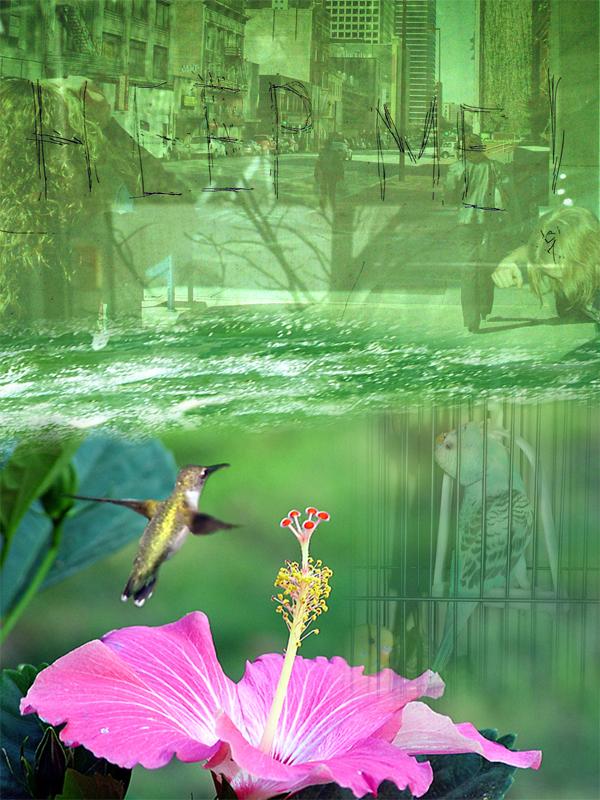 Sadie Ivy   Help , 2005 digital print on canvas