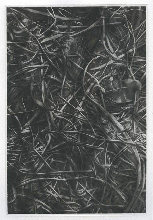 Richard Hricko   Covert II , 2016 copperplate photogravure 9.5 x 6.5 inches