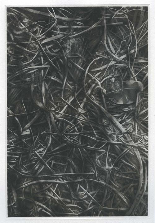 Richard Hricko   Covert II , 2016 copperplate photogravure 9.5 x 6.5 inches