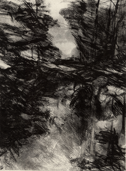 Larinda Meade   River Mist , 2016 soft ground and aquatint intaglio 12 x 10 inches