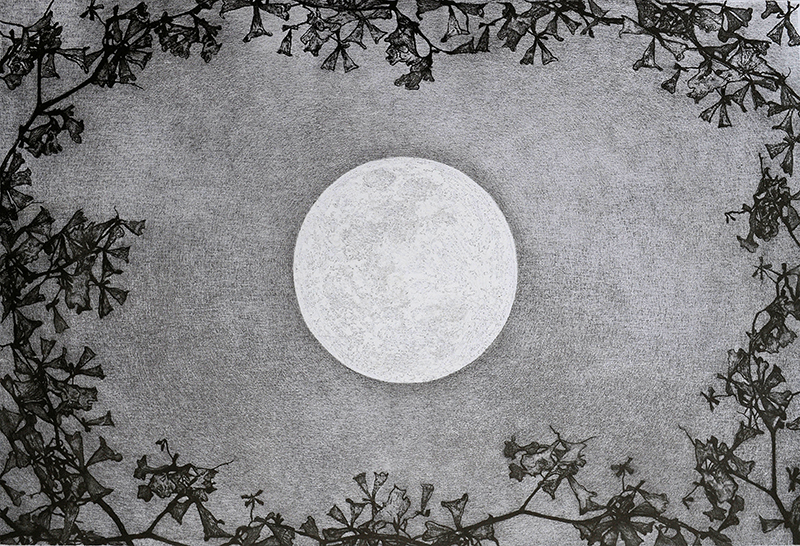Mary & Don Vollman Sponsorship. Underwritten by Mary E. & Dr. Don B. Vollman, Jonesboro. Juror's Merit Award   Raymond DeCicco   Flower Moon , 2017 aluminograph  16 x 24 inches