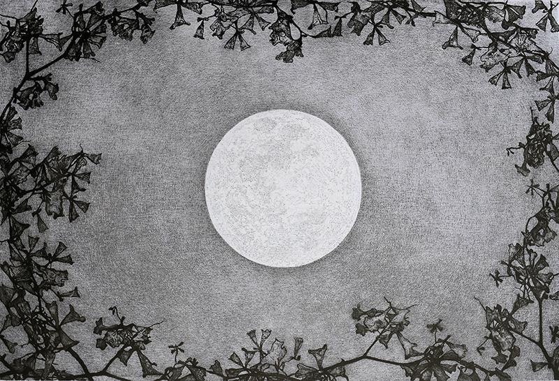 Mary & Don Vollman Sponsorship. Underwritten by Mary E. & Dr. Don B. Vollman, Jonesboro. Juror's Merit Award   Raymond DeCicco   Flower Moon , 2017 aluminograph  16 x 24 inches