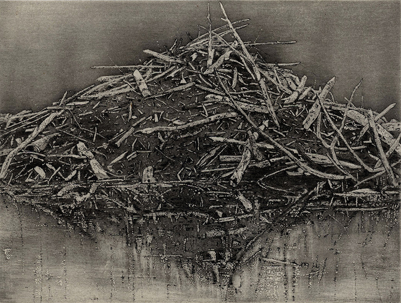 Don A. Tilton Purchase Award. Permanent Collection, Arkansas State University. Underwritten by Don A. Tilton, Little Rock   Anita S. Hunt   Lodge IX (dark version) ,2016 etching, spitbite aquatint and chine colle 4.5 x 6 inches