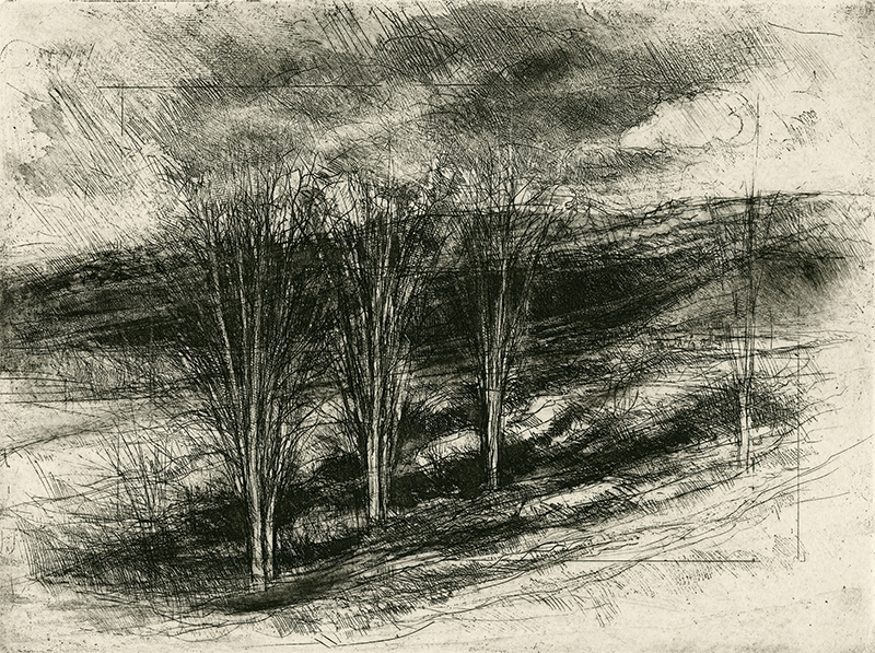 R. Bruce Muirhead   November , 2016 intaglio 9 x 12 inches