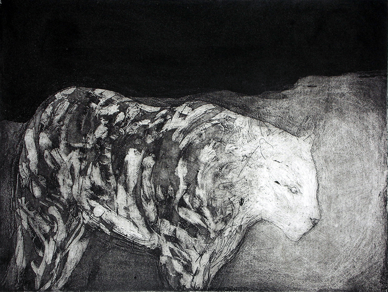 Sarah Sears   Tiger, Tiger , 2015 intaglio 9 x 12 inches