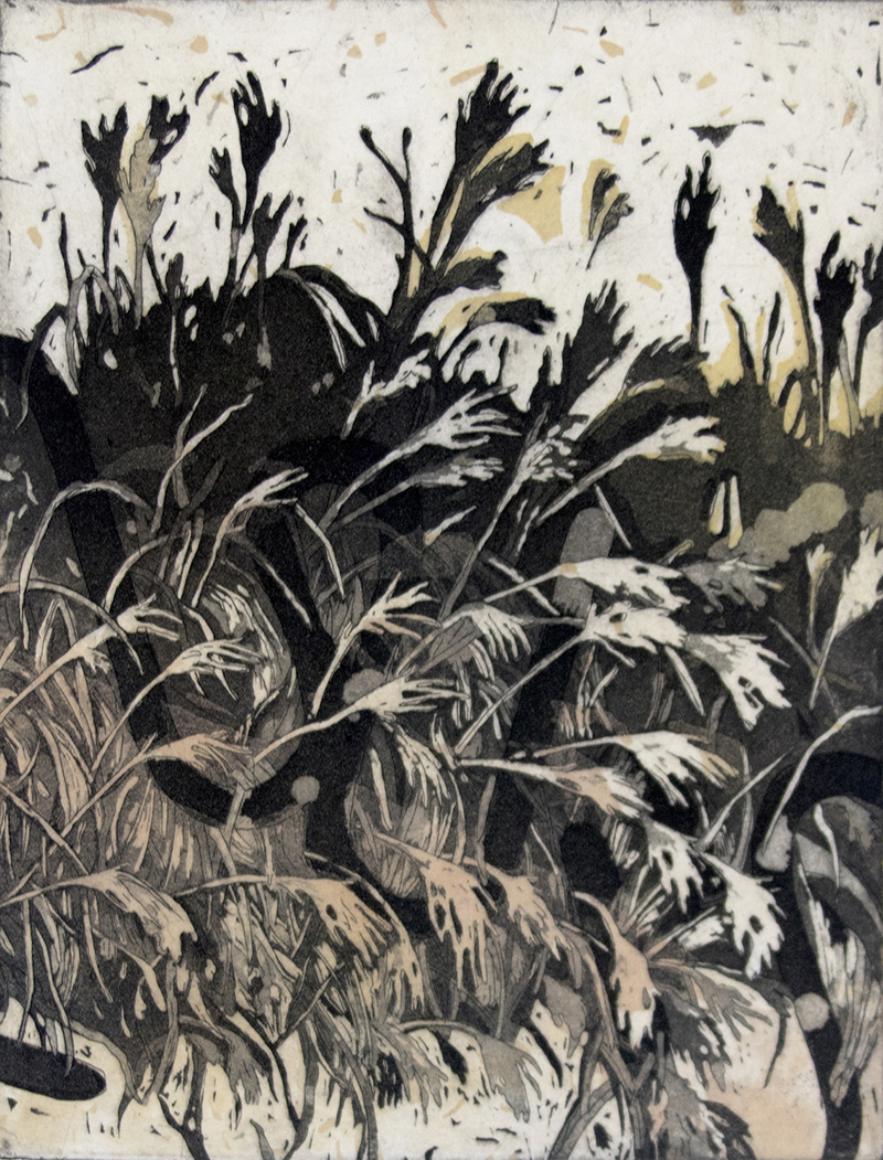 Lila Shull   Bran N. Grain , 2017 intaglio and screenprint 12 x 11 inches