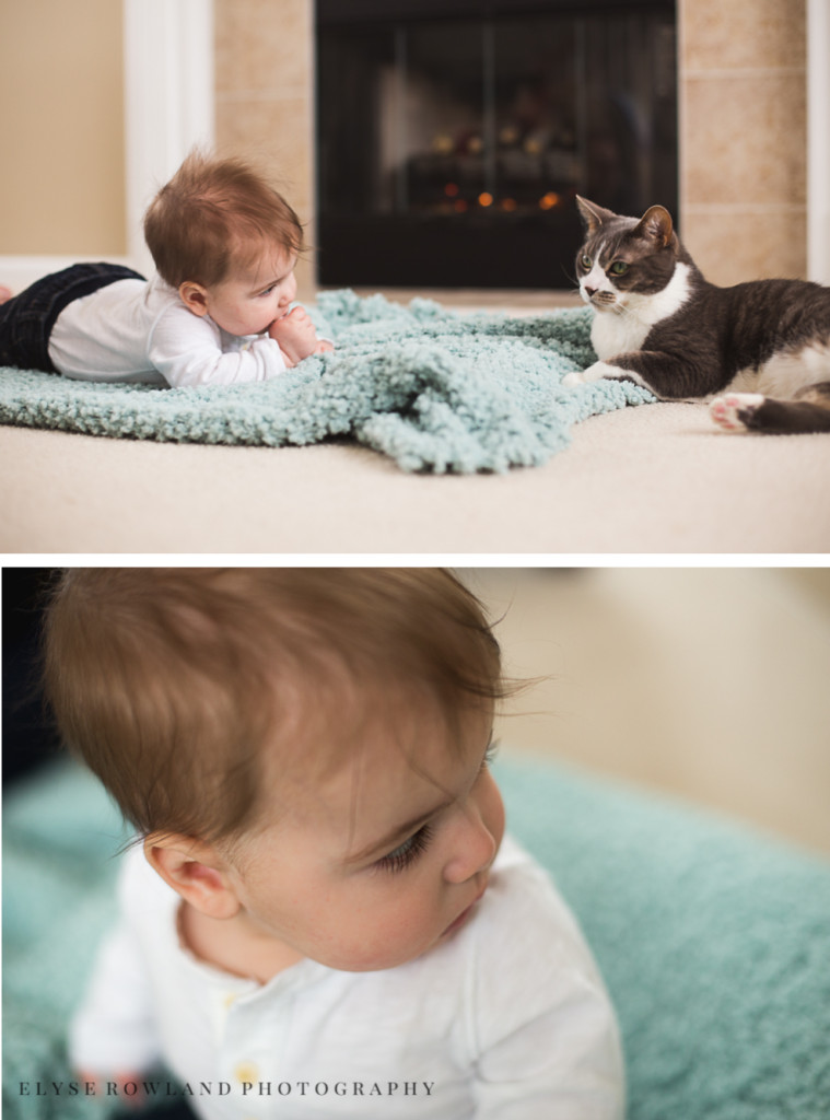baby eyelashes and with cat