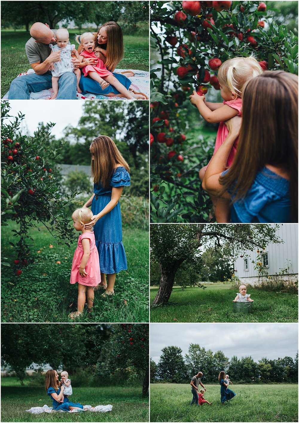 fall family photos in apple orchard