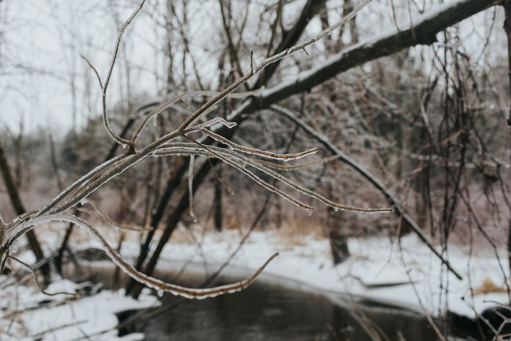 This past week we were hit with another ice storm, and the results were magical. As soon as school was finished for the day, we ran outside to play in the woods.