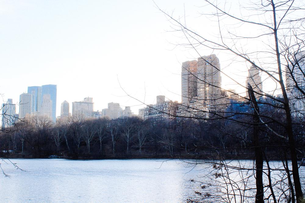 Central Park via Taylorkristiina.com