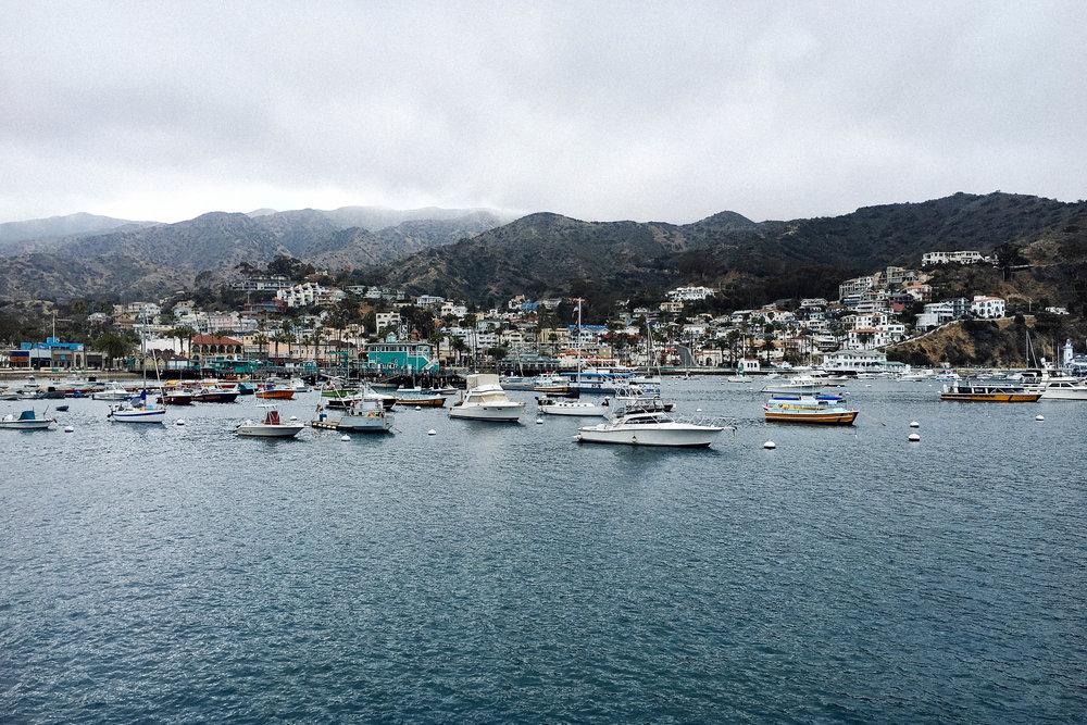 catalina island, CA. taylorkristiina.com