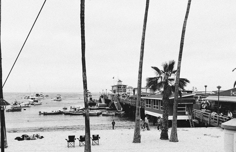 Catalina Island, CA. via taylorkristiina.com