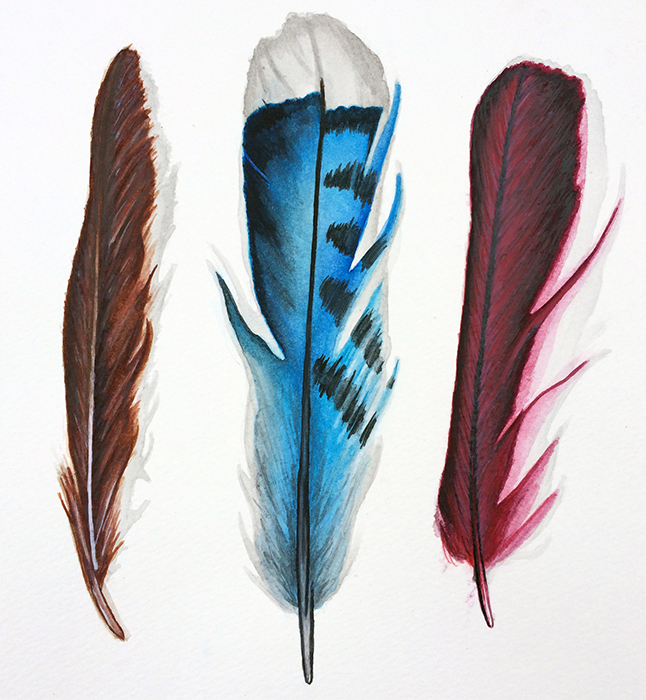 """Feathers"" Watercolor"
