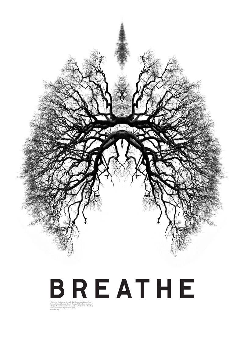 Breathe lungs.jpg