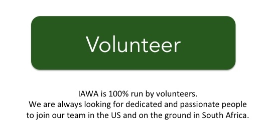 IAWA is 100% run by volunteers.  We are always looking for dedicated and passionate individuals to join out in the US and on the ground in south Africa.