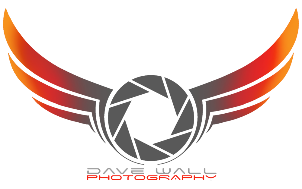 dave wall photo logo
