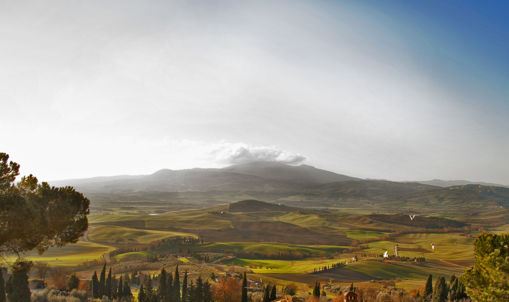 The view from Pienza over the Val d'Orcia (in Tuscany, not far to the north of Orvieto)(Photograph by Madeline Linnell).