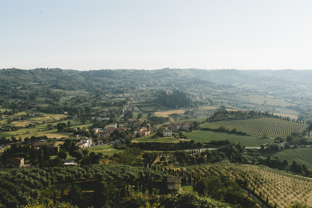 This, like every view from Orvieto, includes the mix of four elements in Umbrian landscape: vineyards, olive groves, woodsy areas, agricultural fields (Photograph by Miranda Fuchs).