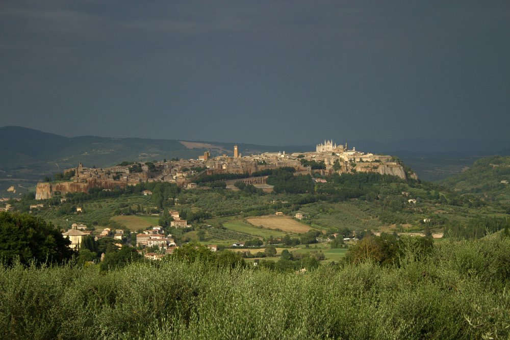 View of Orvieto from the Capuchin monastery (Photograph by Erin Burlew).