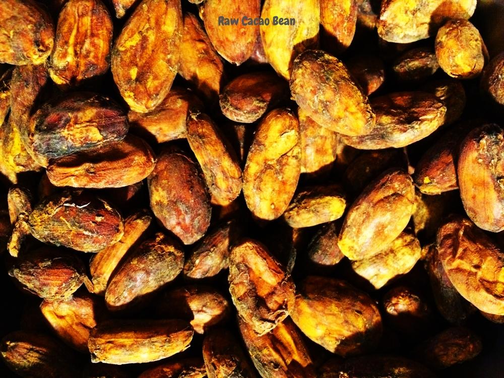 Raw Cacao.jpg