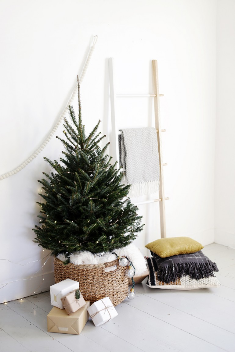 Source: http://themerrythought.com/diy/simple-christmas-tree-display/