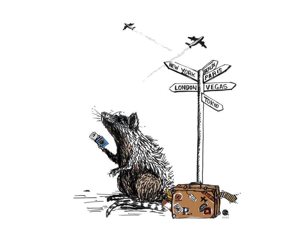 travel-ratty.jpg
