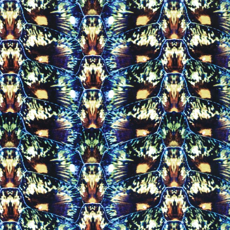 Tropic Tortoiseshell  animal fashion print | SOLD
