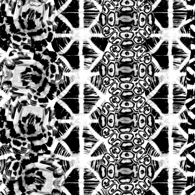 Tortoise Tribe  animal fashion print | SOLD