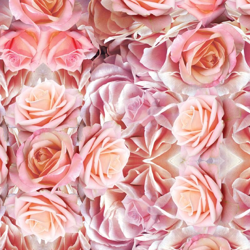 Dreamer  rose floral fashion print | SOLD