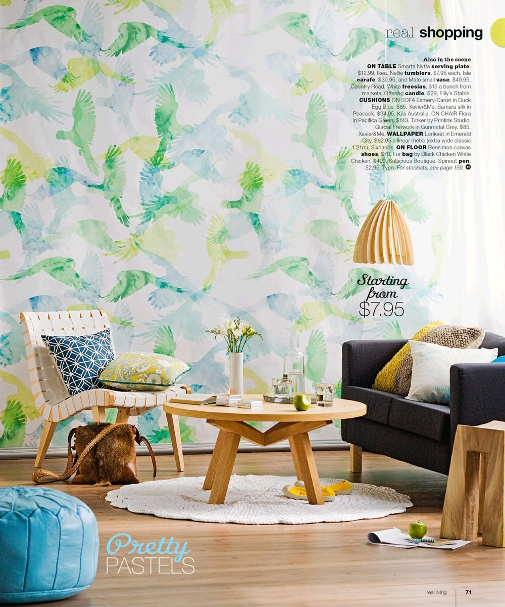 Lorrikeet Wallpaper featured in Real Living